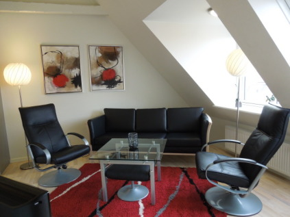 furnished 1-bedroom apartment in Aarhus city centre